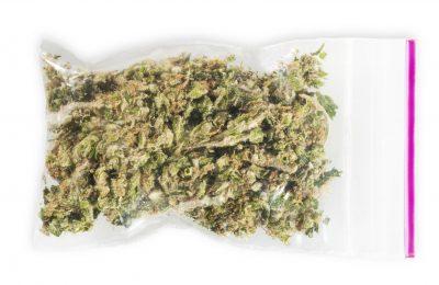 2018-12-15-Cannabis Zal Vroeg Of Laat Legaal Worden
