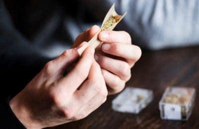 2018-12-18-Research Weed mentesség A Tilburg még nem fejeződött be: a külföldiek is helyesen kezdhetnek 2019-ban a kávézóban