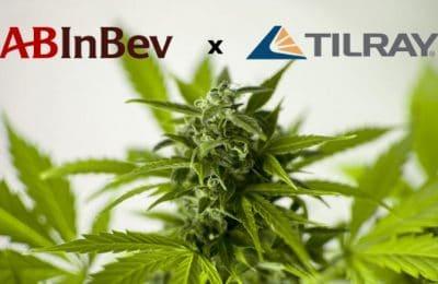 30-12-2018-AB InBev Investeert Ruim 50 Miljoen Dollar In Cannabisbedrijf