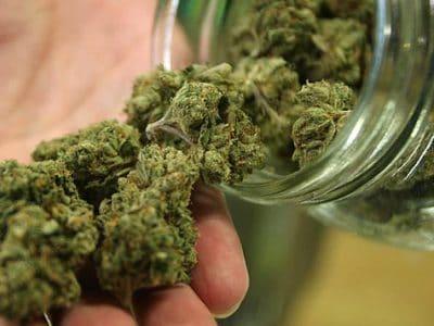 Canada's MedC Ontwikkelt Op Basis Van Cannabis-gebaseerde Kankerbehandeling Op Basis Van Israëlische Technologie