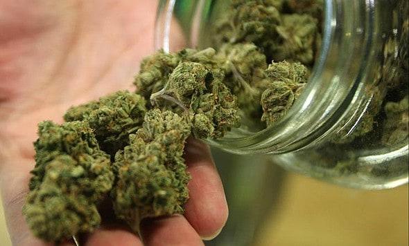 Ang MedC sa Canada Nagpalambo sa Cannabis-based nga Pagtambal sa Kanser nga Gibase Sa Teknolohiya sa Israel