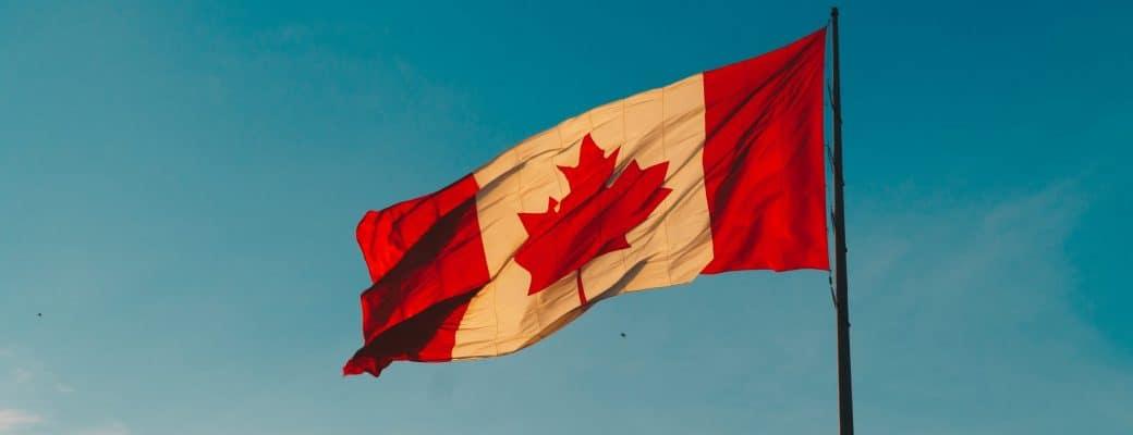 Canadese Wietproducent Tilray Verovert De Cannabiswereld