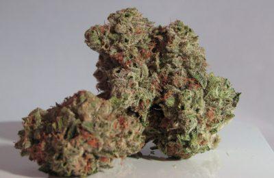 Medicinale Cannabis 'minder Toxisch' Dan Gewone Kanker.jpg