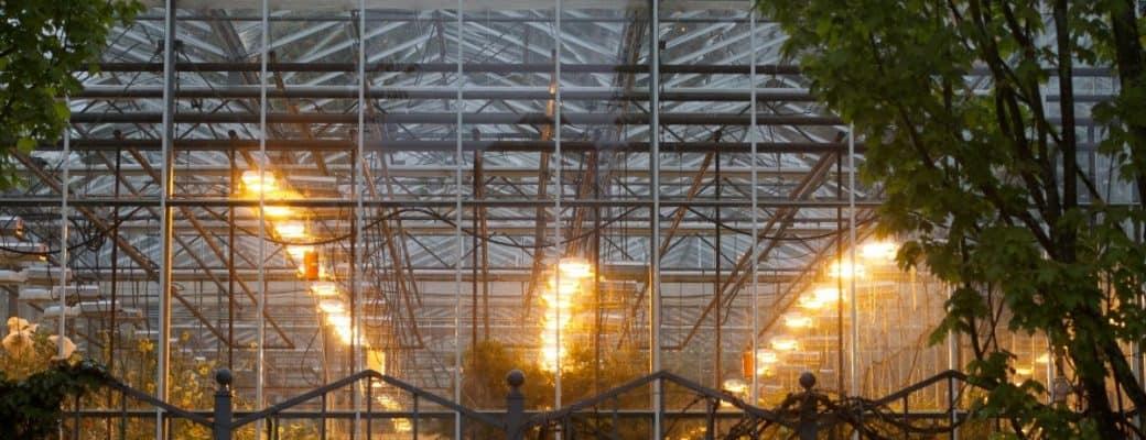 Lichtindustrie Verdient Miljoenen Aan Wietbranche