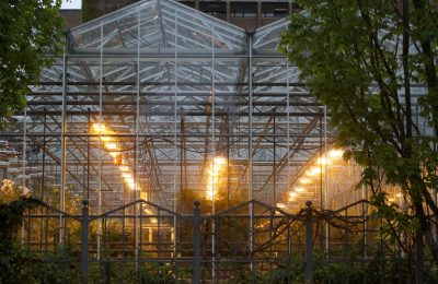 Industrija 2019-01-27-Light proizvodi milione na industriju korova