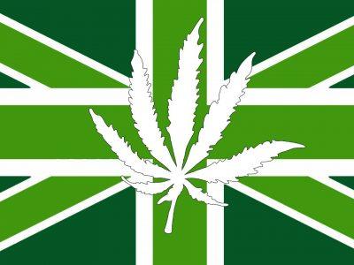 Nieuw Medisch Cannabisbedrijf Wordt Gelanceerd In Het Verenigd Koninkrijk