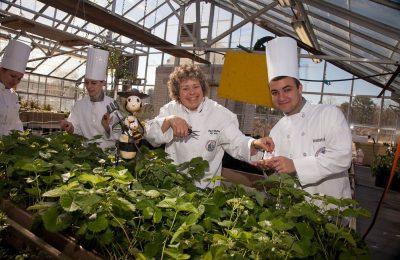 Om Zijn Culinaire Programma Te Verfraaien, Wil Een Universiteit Van New Jersey Met Cannabis Koken