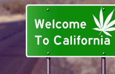 Oh Oh, Californië Zou Tegen De Zomer Geen Legale Cannabis Meer Kunnen Hebben