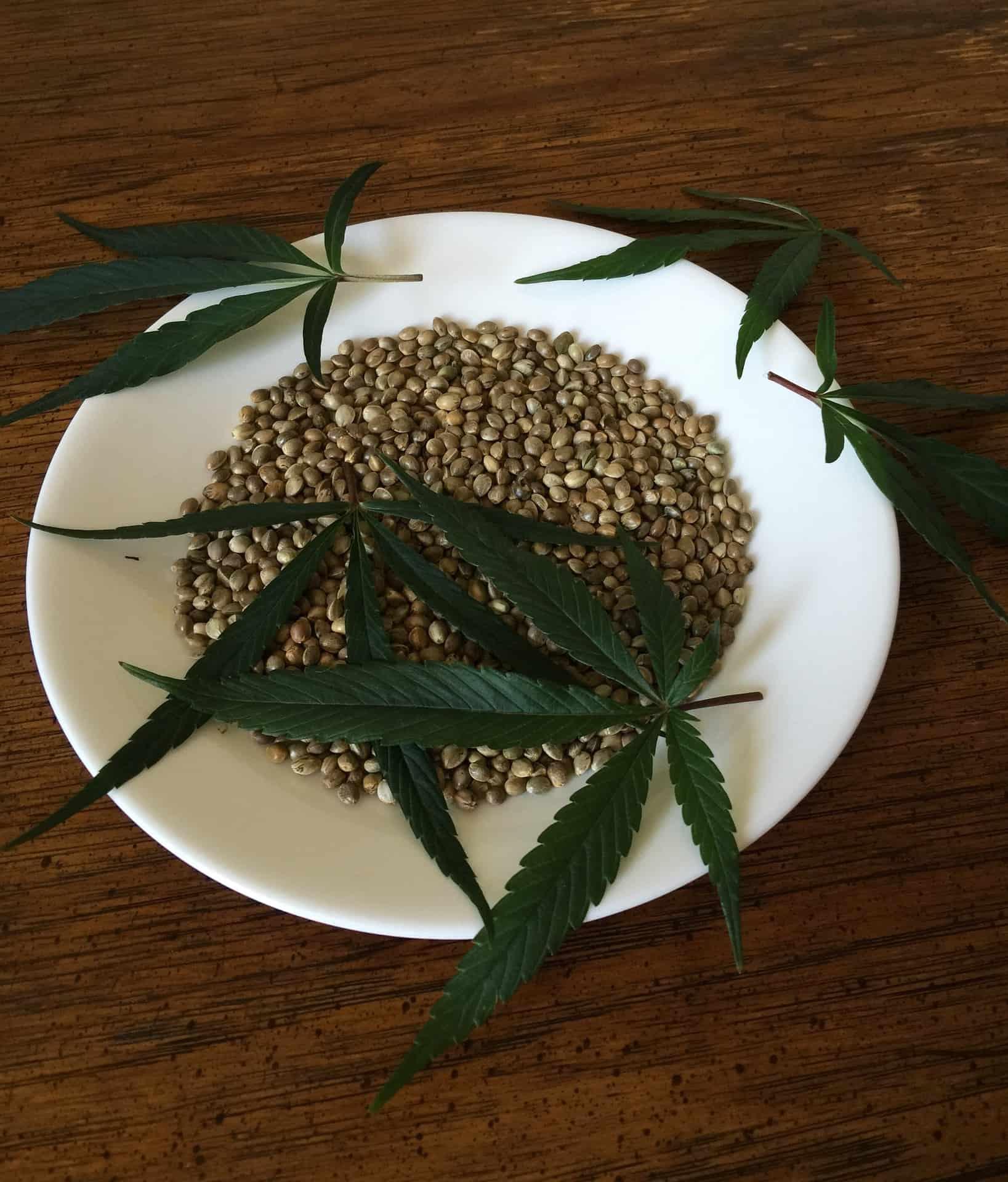 Готовим с марихуаной закон о выращивании конопли дома