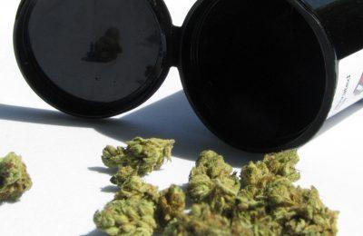 Hoe Israël De Wereldwijde Leider Werd In Cannabisonderzoek