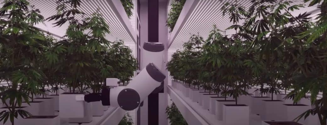 Eerste Volledig Geautomatiseerde Cannabiskwekerij Ter Wereld