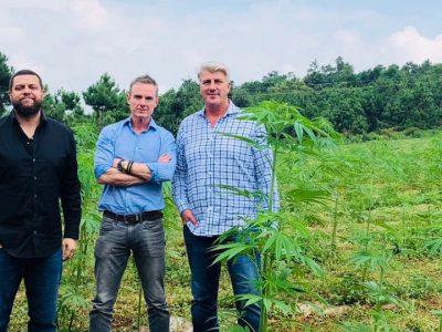 Deze Jongens Hebben Te Maken Met Cannabis In Singapore - En Voelen Zich Niet Paranoïde.