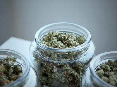2019-07-19 Ministeryo Nangita Sa Supplier Ng Medicinal Cannabis