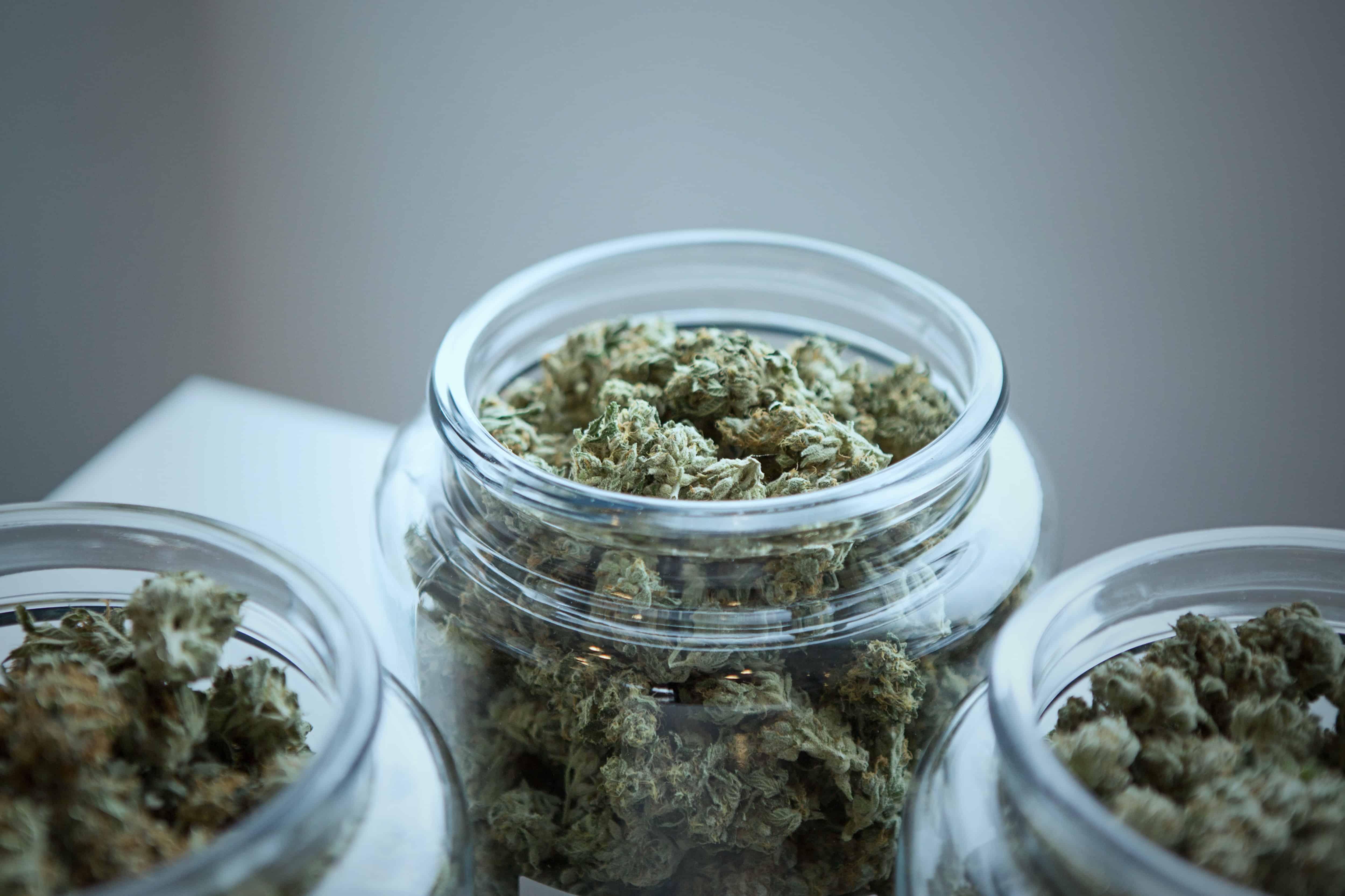 2019-07-19-Ministerie op zoek naar leveranciers van medicinale cannabis