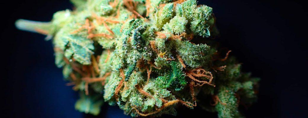 Honderden Engelse Patiënten Afhankelijk Van Dure Privéklinieken Voor Medicinale Cannabis