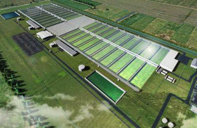 2019-08-23-Cannatrek Bouwt Mega Cannabisfabriek Voor Mediwiet In Australië