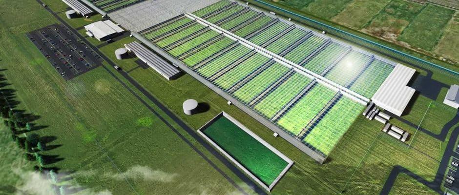 Cannatrek Bouwt Mega Cannabisfabriek Voor Mediwiet In Australië