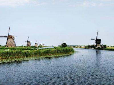 Groen Licht: Tien Steden Genoemd Voor Gelegaliseerd Cannabis Teelt Experiment In Nederland