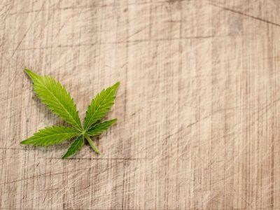 Mikrodoziranje s marihuanom: Prednosti 3 i Savjeti 5