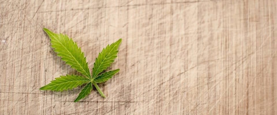 Microdosering Met Marihuana: 3 Voordelen En 5 Tips