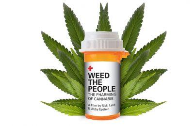 Cannabis TV Series Ug Pelikulang Daghang Kaanyag Sa Amazon, Apple TV Ug Netflix