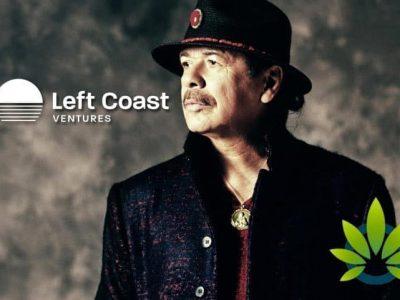 Svjetski poznati gitarista Carlos Santana pokreće vlastitu vrstu korova