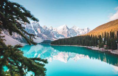 2020-01-24-Cannabisproducent Uit Alberta Bevestigt Ontslagen