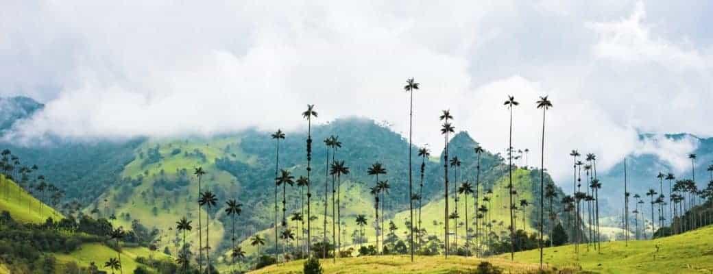 Ugma Sa Telebisyon: Dokumentaryo sa reyalidad nga 'The Cocaine Trail'