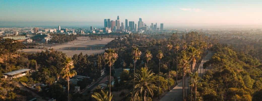 Cannabis Hamsteren: Cannabisbedrijven Zien De Verkoop In LA Toenemen