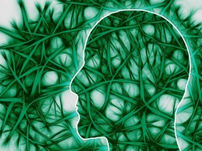 Studie: CBD Kan Het Afsterven Van Hersencellen Vertragen