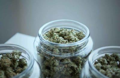 23 benepisyo sa kahimsog sa marijuana nga wala nimo nahibal-an