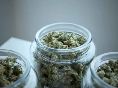 23 Voordelen Van Marihuana Voor Je Gezondheid Die Je Mogelijk Nog Niet Kende