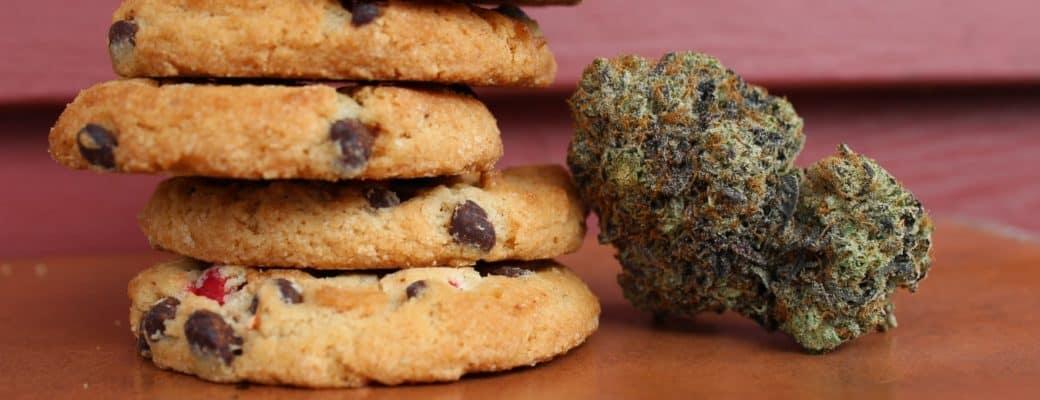 Hoe Lang Blijven Eetbare Cannabisproducten Vers?