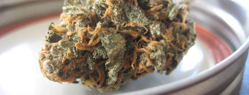 De Werking Van Cannabinoïden