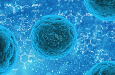 La cannabis può aumentare la capacità delle proteine di combattere i virus e l'infiammazione?