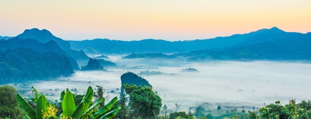 Thaise Autoriteiten Overhandigen 24 Ton In Beslag Genomen Cannabis Aan Onderzoekers