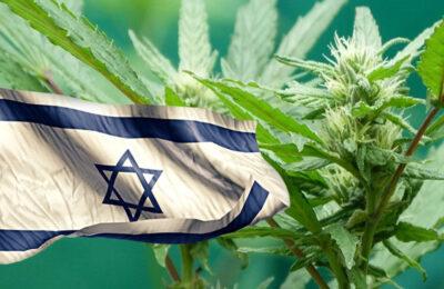 Izrael megelőzi Németországot mint a kannabisz gyógynövények legnagyobb importőre