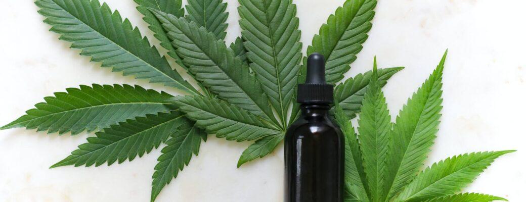 Wat Is Het Verschil Tussen Marihuana-CBD En Hennep-CBD?