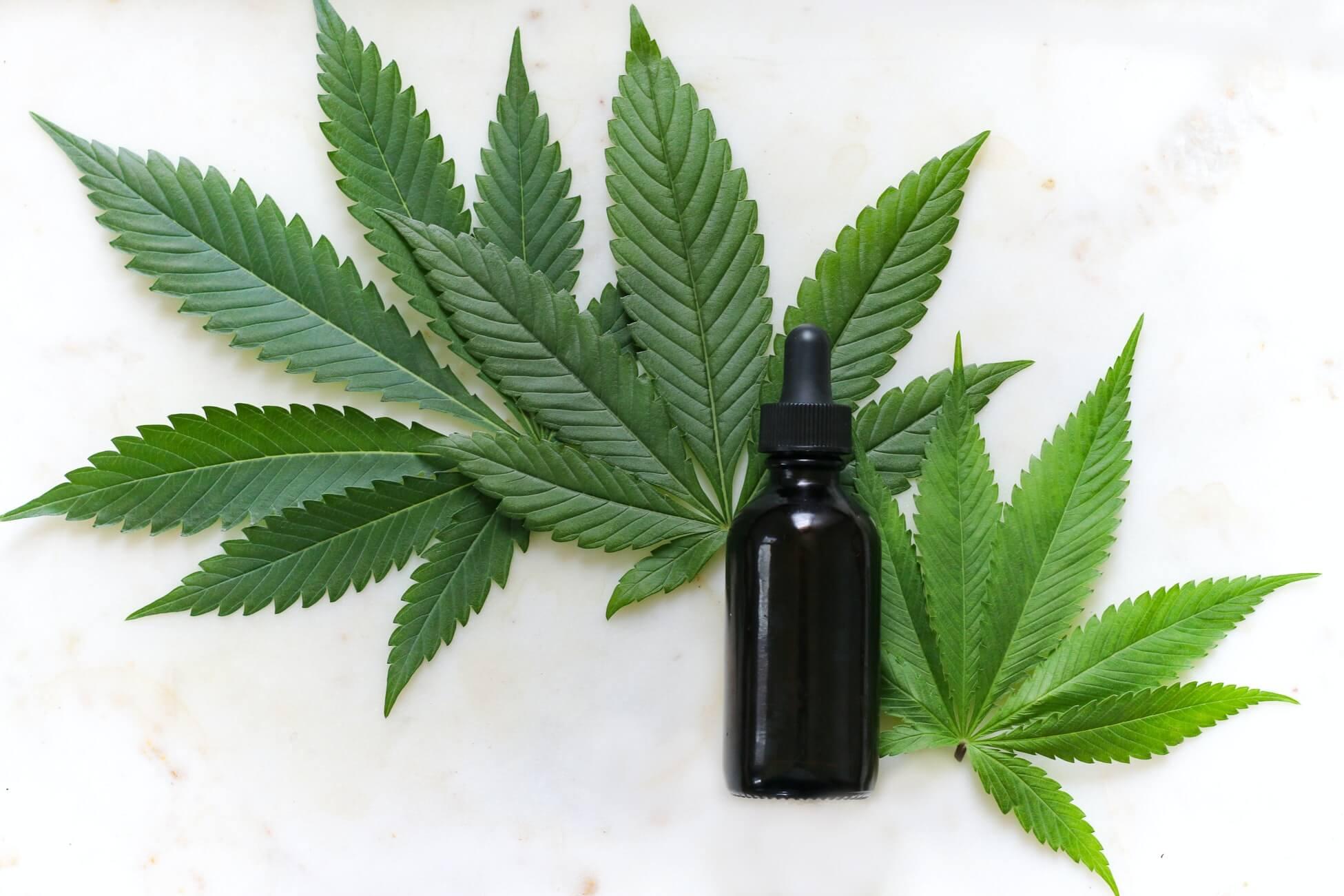 Какой запах марихуаны польза от марихуана