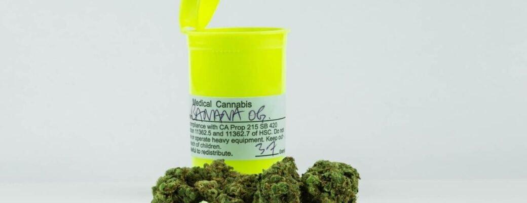 Cannabislegalisatie: Waar Is Medicinale Cannabis Legaal In De Wereld?
