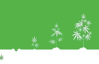 Nieuwe Inwisselbare Cryptocurrency Cana Token Gelanceerd - Ondersteund Door Cannabis Zaden