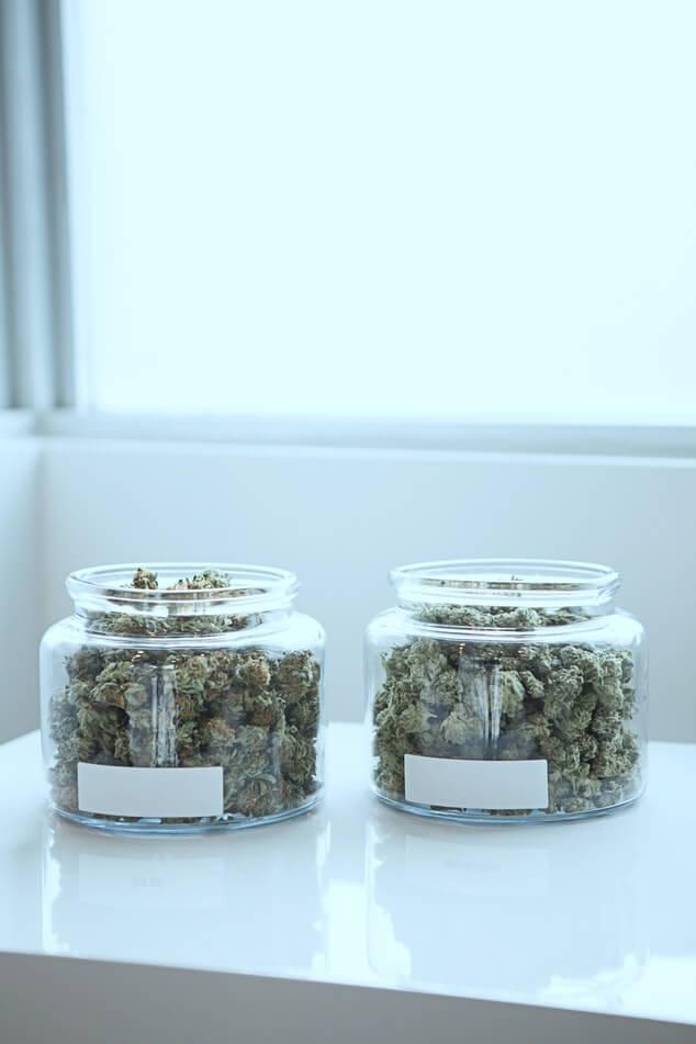 Giunsa Nakatabang ang Cannabis sa Pagwagtang sa mga Suliran sa Tinnitus - Mga Kaldero sa Gauga nga Mga Bud sa Cannabis