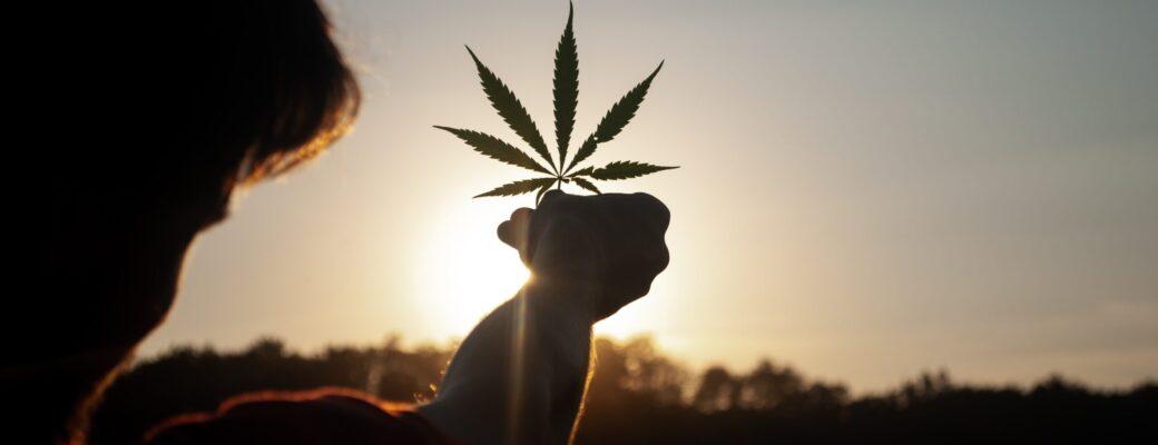 Komisija UN-a više ne smatra kanabis opasnom drogom