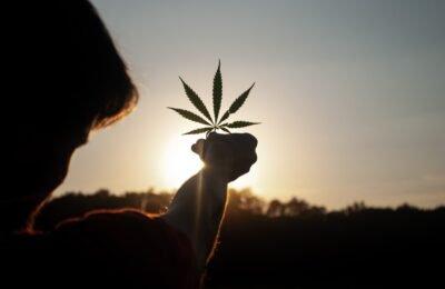 4-12-2020-VN-commissie Ziet Cannabis Niet Langer Als Gevaarlijk Verdovend Middel