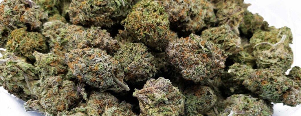 Miljard Gram Cannabis Opgeslagen Zonder Verkocht Te Worden
