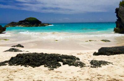 Cannabis Op Bermuda En Barbados: Economie Moet Boost Krijgen Vanwege COVID-19