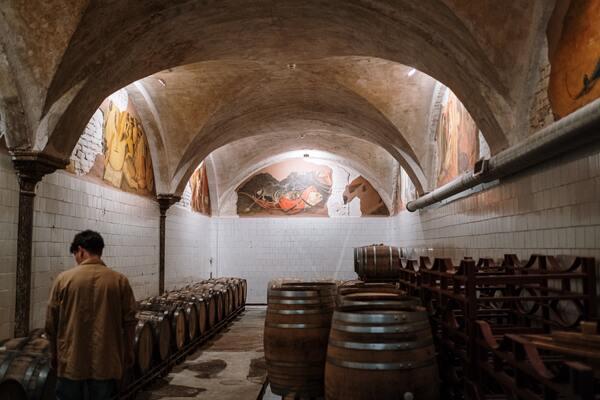 De eerste wijn met CBD in Frankrijk