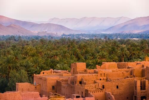 Voorgunningen voor medicinale cannabis in Marokko
