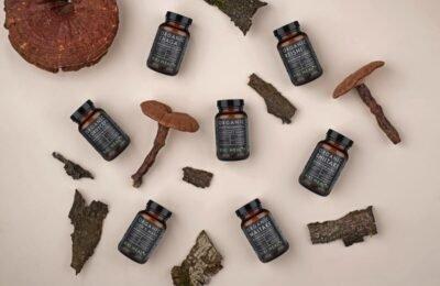 Reishi gljiva: 8 zdravstvenih blagodati ove gljive i njezini nuspojave