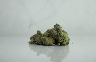 2021-03-20-Huisartsen In Tasmanië Kunnen Straks Medicinale Cannabis Voorschrijven